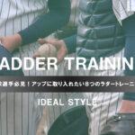 野球選手必見!アップに取り入れたい8つのラダートレーニング
